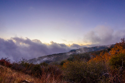 Encroaching Fog [2/3]