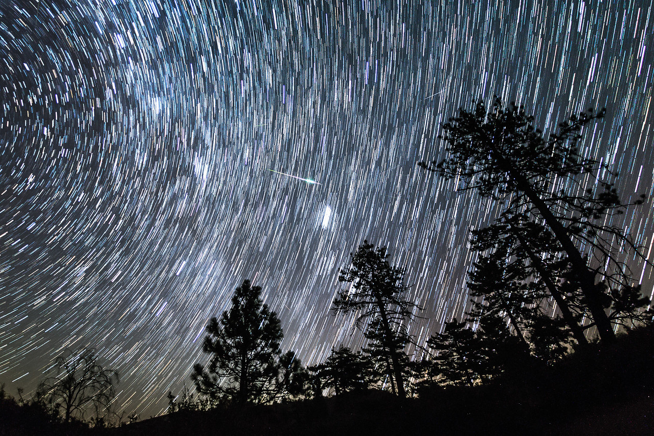 Perseid Meteor and Star Trails