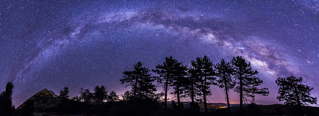 Milky Way and pine trees in Cuyamaca panorama