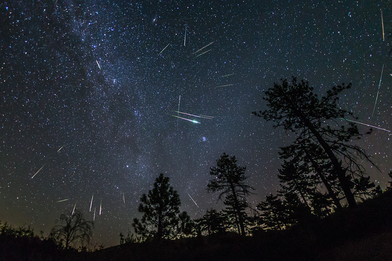 Stacked Perseids 2016 Over Cleveland National Forest