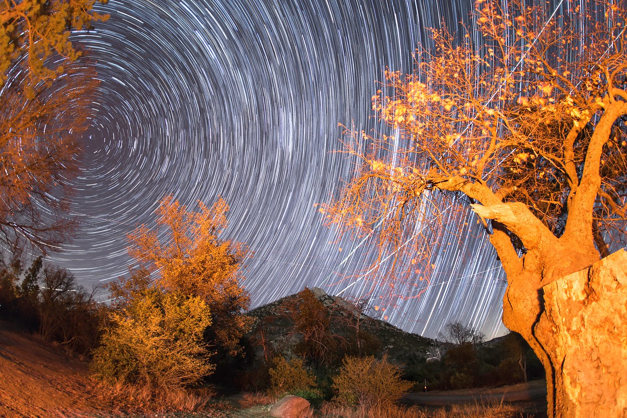 Star trails in Cuyamaca Rancho State Park.