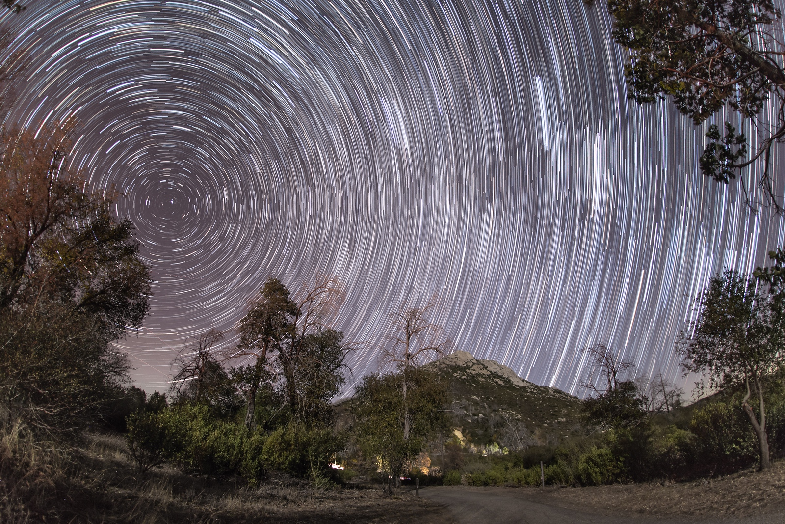 More star trails at Cuyamaca Rancho State Park