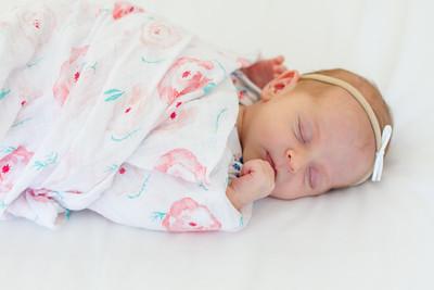 Lifestyle Newborn Photos by AlohaBug Photography