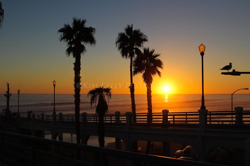 San Diego Photography