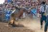 Lakeside Rodeo 2012_2298