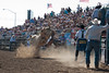 Lakeside Rodeo 2012_2299