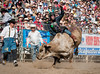 Lakeside Rodeo 2012_2206