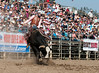 Lakeside Rodeo 2012_2183