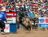 Lakeside Rodeo 2012_2199
