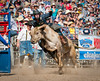 Lakeside Rodeo 2012_2200