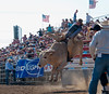 Lakeside Rodeo 2012_2268