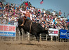 Lakeside Rodeo 2012_2188