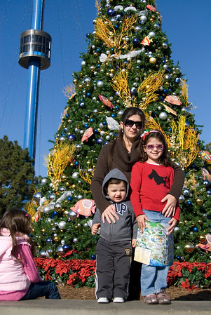 Sea World Xmas Decoration 2009