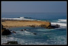 Children's Beach in La Jolla.  Seals have taken over the beach.