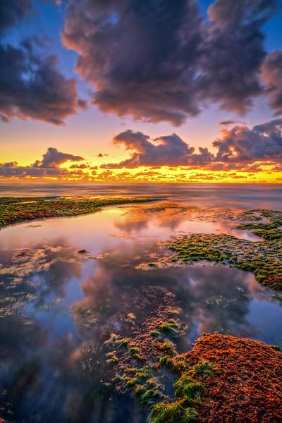 Colorful Tide