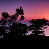 20130407_Torrey Pines_9501