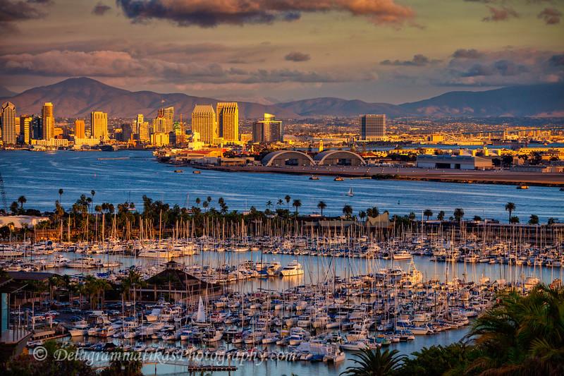 20141114_San Diego_9957