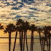20161029_San Diego_9712