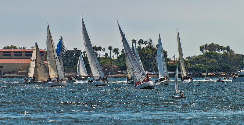Sailboats on San Diego Bay
