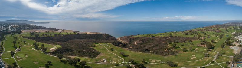 Torrey Pines Panoramic