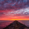 20161028_San Diego_9953