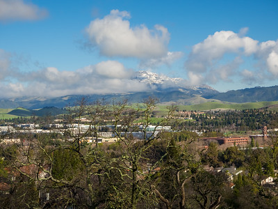 Rare SF Bay Area Snow. Mt. Diablo & San Ramon. Grey Fox Trail. Bishop Ranch Regional Preserve - San Ramon, CA, USA