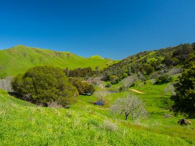 Nortonville Road. Black Diamond Mines Regional Preserve. Antioch, CA, USA