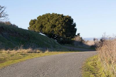 Coyote Hills Regional Park - Fremont, CA, USA