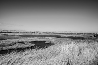 Bay View Trail. Coyote Hills Regional Park - Fremont, CA, USA