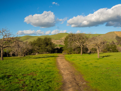 East Shore Trail. Del Valle Regional Park - Livermore, CA, USA