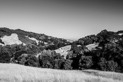 Rocky Ridge Road - Las Trampas Regional Wilderness - Contra Costa County, CA, USA