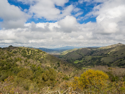 In the distance: Interstate 680, Tri-Valley, and Mt. Diablo.  Ohlone Wilderness Trail. Ohlone Regional Wilderness. Alameda County, CA, USA