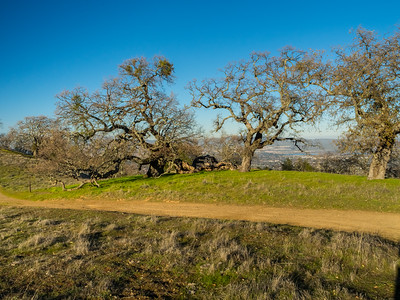 Ridgeline Trail. Pleasanton Ridge Regional Park - Sunol, CA, USA