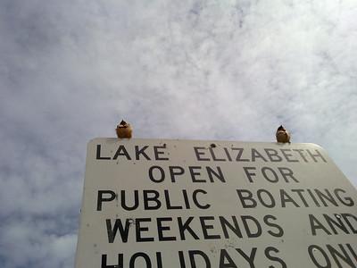 Barn Swallow (Hirundo rustica). Fremont Central Park - Fremont, CA, USA