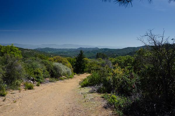 california; loma prieta; san francisco bay area; santa cruz mountains; uvas canyon county park The hike up to Loma Prieta starts with a rather steep hike up Knibbs Knob Trail, but the view down canyon is fairly rewarding.