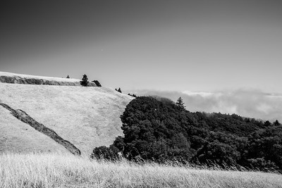 Near Trojan Point. Mt. Tamalpais State Park - Marin County, CA, USA