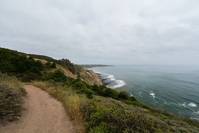 Coast Trail. Point Reyes National Seashore, CA, USA