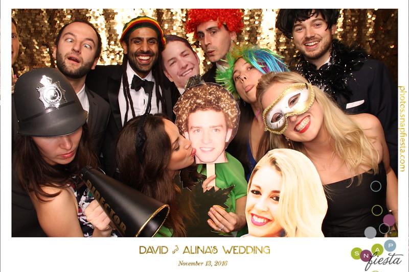 David and Alina's Wedding  11.13.16