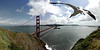 This is a 7 shot panorama taken above Kirby Cove in the Marin Headlands.