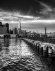 Pier 7 and Transamerica 11x14 BW