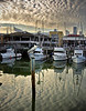 WharfBoatsWithNightHeron