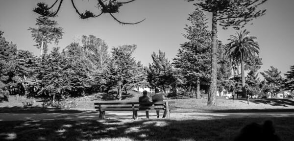 Park Bench Sutro Heights Park
