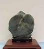 Bedrock Serpentine