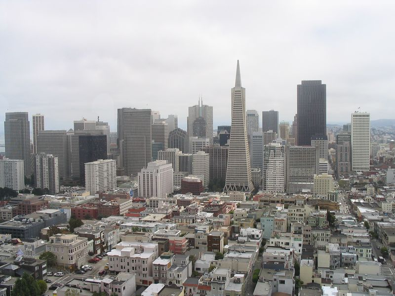 View from atop Coit Tower (my building is the white one on the right)