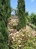 "Outside Viansa Vineyards  <a href=""http://www.viansa.com/"">http://www.viansa.com/</a>)"