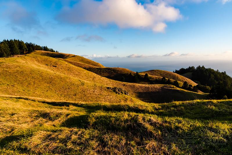 Rolling Coastal Hills