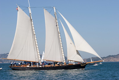 America Replica - Compare with an AC72 -See #8- used in the most recent America's Cup