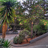 """Did you know San Francisco had a second """"crookedest"""" street? This is Vermont Street and although it is not as decorated as Lombard Street, it is very curvy."""