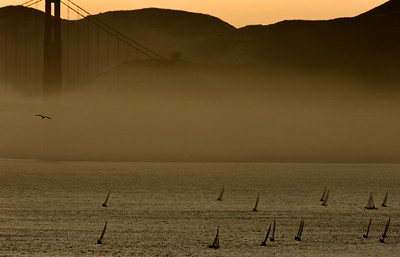 Race on the Bay