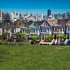 Painted Ladies 4364